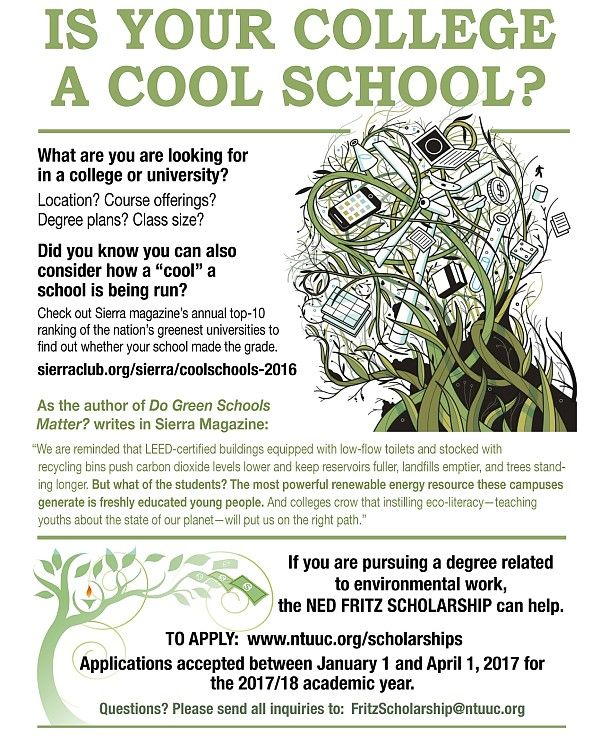 NedFritz scholarship COOL2017